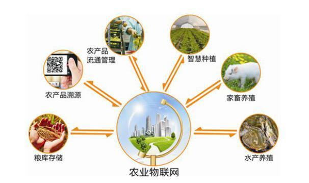 农药一物一码追溯系统 打造农资监管平台